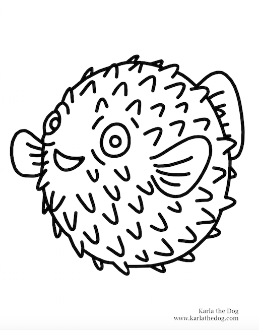 color blowfish